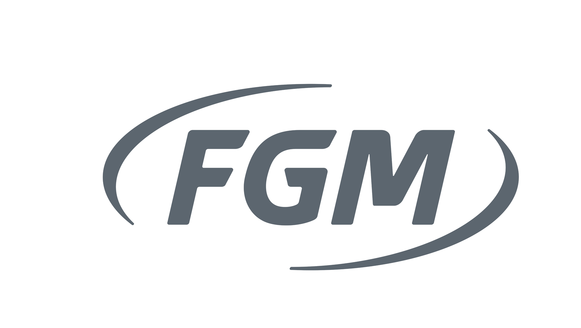 https://www.fgm.ind.br/site/